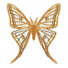 Graellsia Isabellae butterfly vector